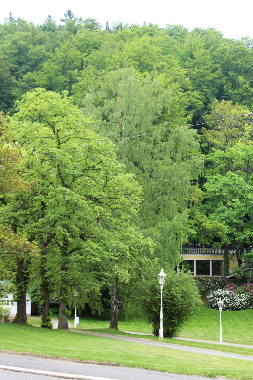 18-05-11_Marienbad